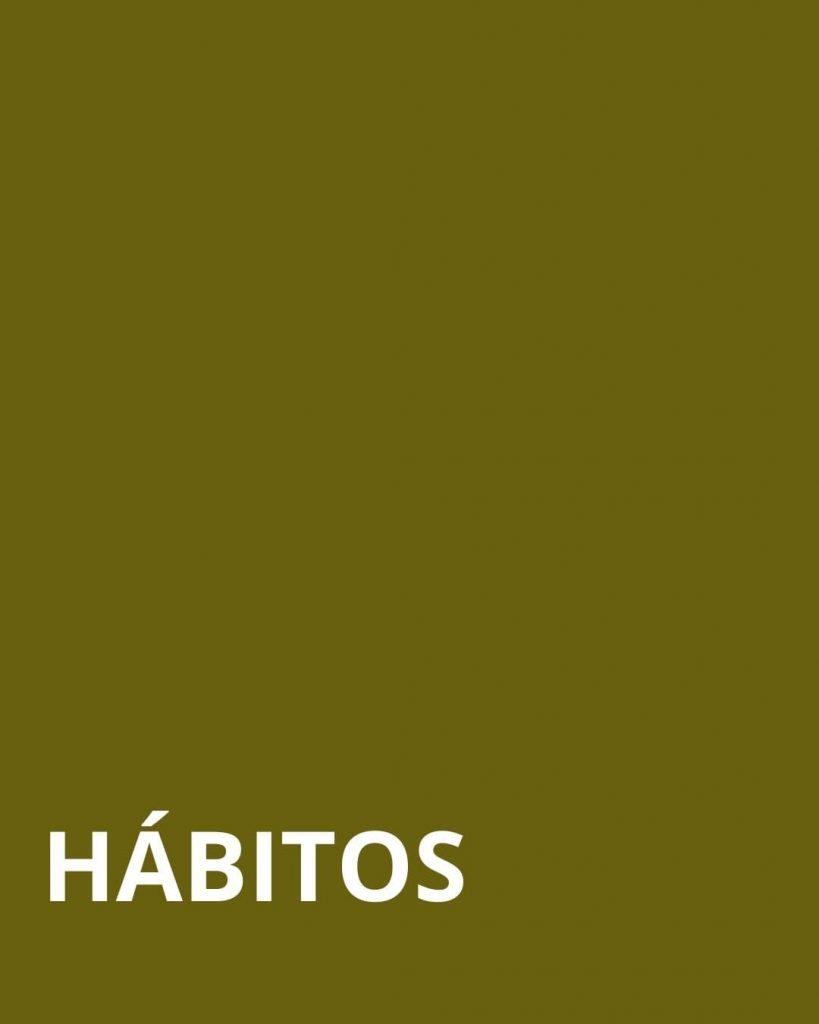 HÁBITOS COLOR